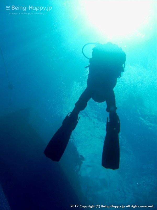 ダイビング中の茶子と水面から降り注ぐ太陽光