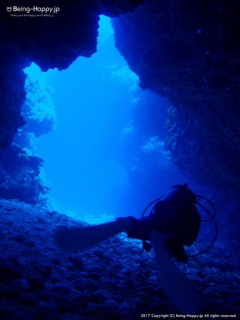 海の中の洞窟を泳ぐ茶子