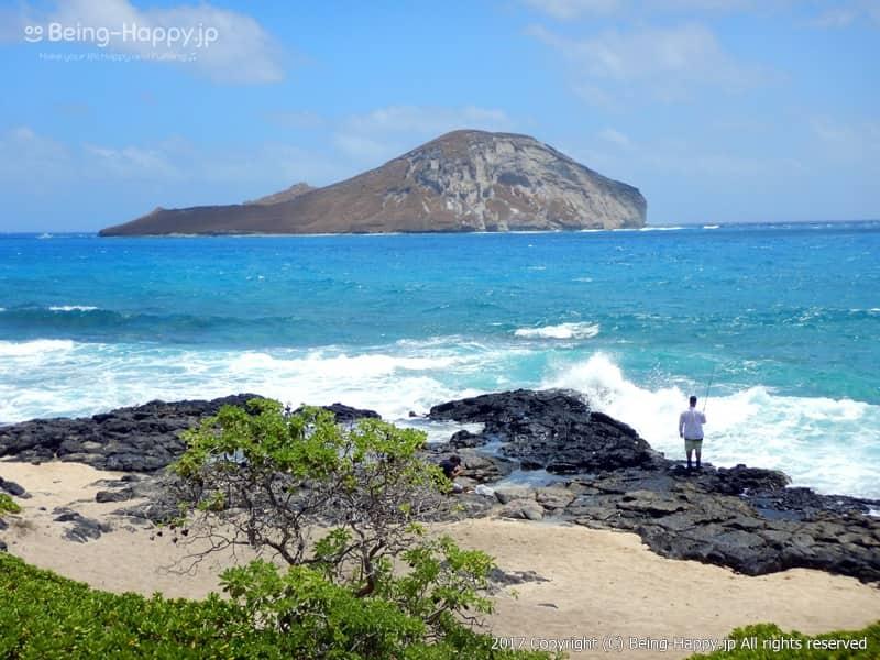 ビーチの緑と白い砂浜と黒い岩とコバルトブルーの海のコントラストが美しいーカラニアナオレ・ハイウェイ(Kalanianaole Hwy) マカプウ、ハナウマ湾、ワイマナロ、カイルアなど、数々の絶景を臨めるとして人気のドライブコース photo by 茶子(ちゃこ)