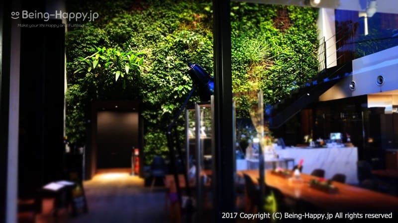 お店内部そ外から見たもの@code kurkku(コードクルック)at 代々木ビレッジ VILLAGE photo by 茶子(ちゃこ)