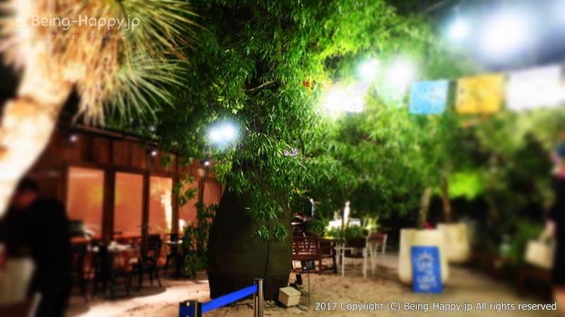 ボトルツリー2階@ 代々木ビレッジ VILLAGE photo by 茶子(ちゃこ)