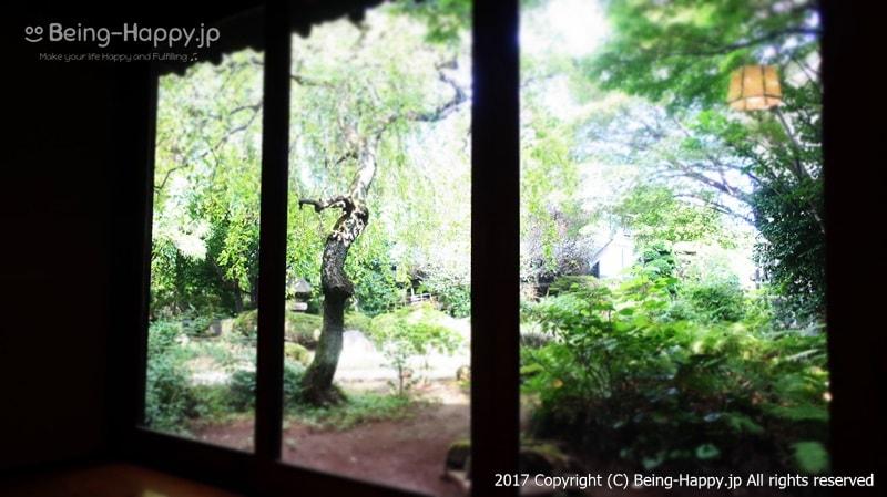 そば処 桔梗家ー蕎麦を待つ間に見えた窓からの美しい庭