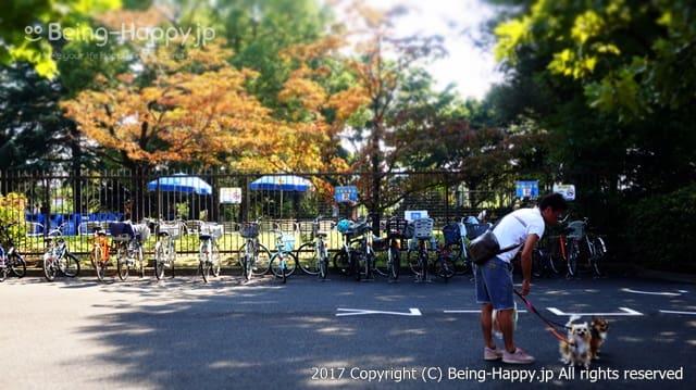 昭和記念公園 - ドッグラン