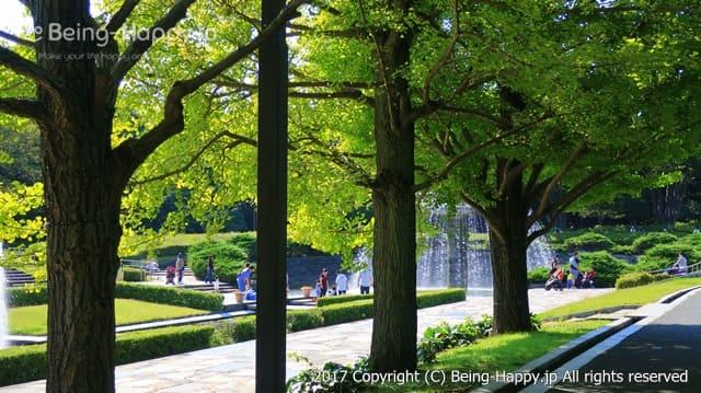昭和記念公園 - 木の後ろに噴水