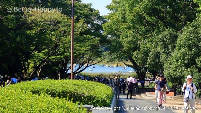 昭和記念公園 - 歩道と池