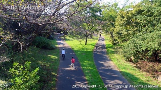 昭和記念公園 - サイクリングコース