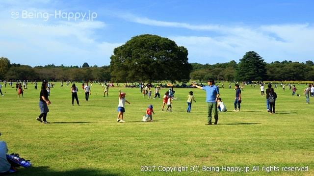 昭和記念公園ーフリスピーで遊ぶ家族