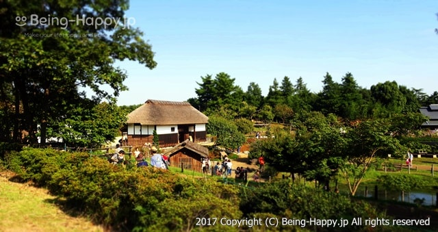 昭和記念公園 - こもれびの里