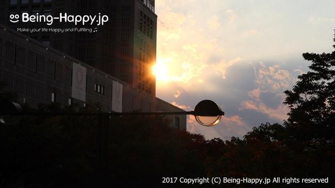 新宿都庁へ差込む美しい夕焼け