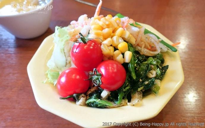 お皿に取ったサラダ