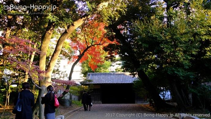 紅葉と日本庭園