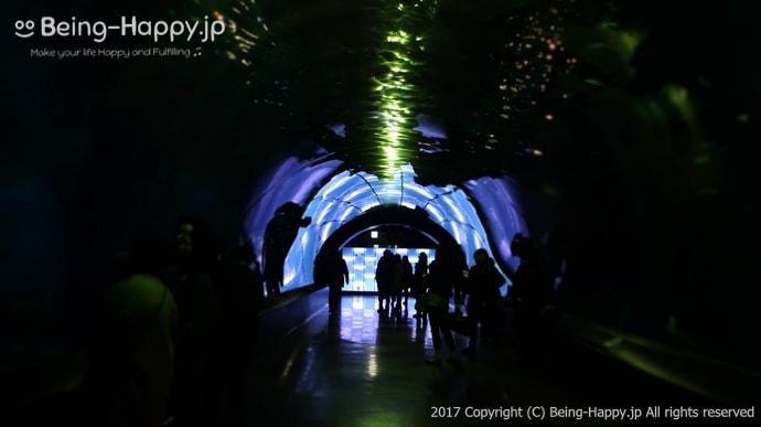 海中トンネル