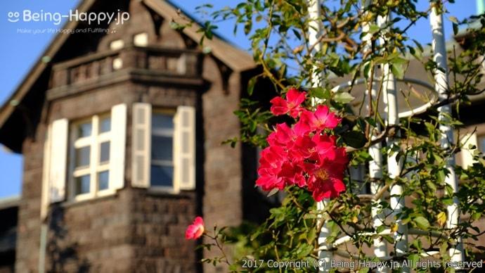 旧古河庭園ーバラと洋館