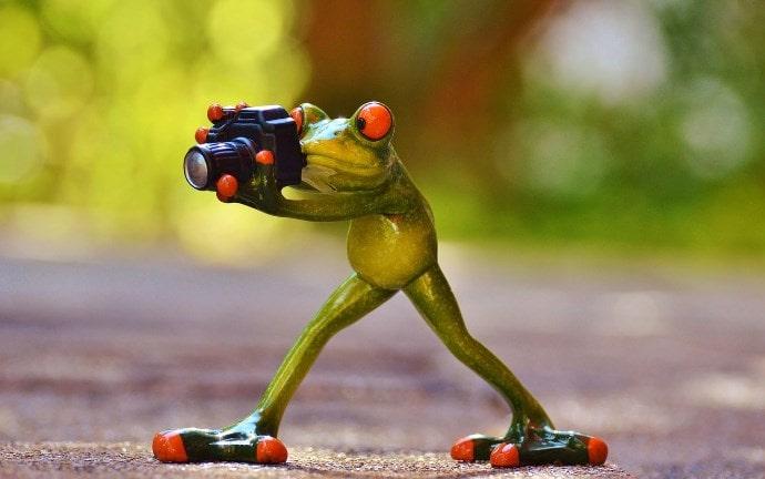 写真は、カメラの腕や経験、レンズなど複合的な要因で決まる