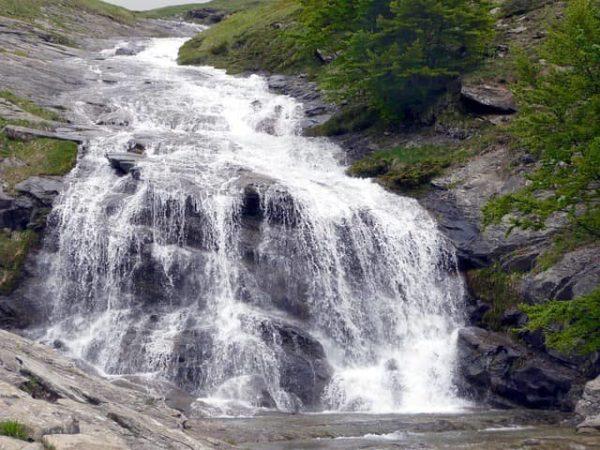 天然水の採水地は自然がいっぱい