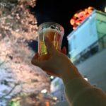【としまえん】夜桜ライトアップが最高!お花見宴会の様子をお伝えします
