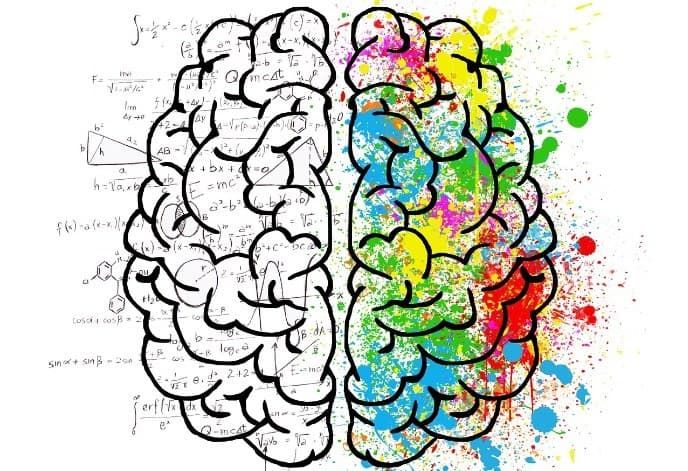 脳は出力を重視する