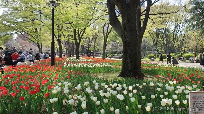 日比谷公園 第二花壇