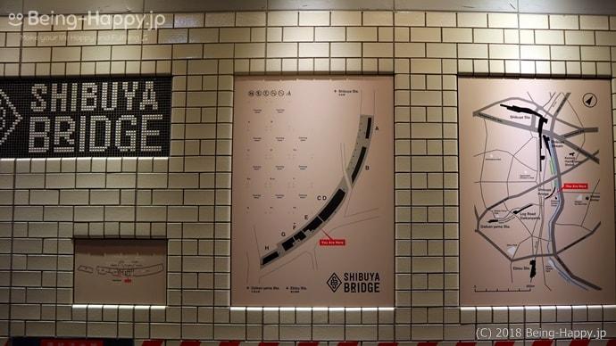 渋谷ブリッジ案内図