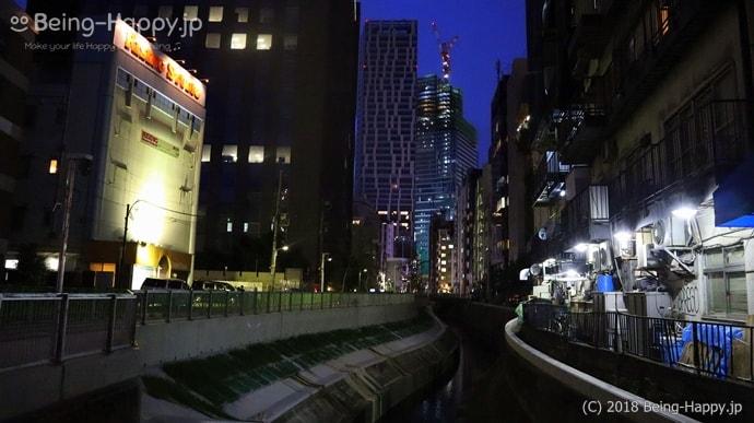 並木橋からみた遊歩道