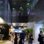 【初日レポ】渋谷ストリームお勧めグルメや楽しみ方を実際に歩いた写真とともにお伝えします!