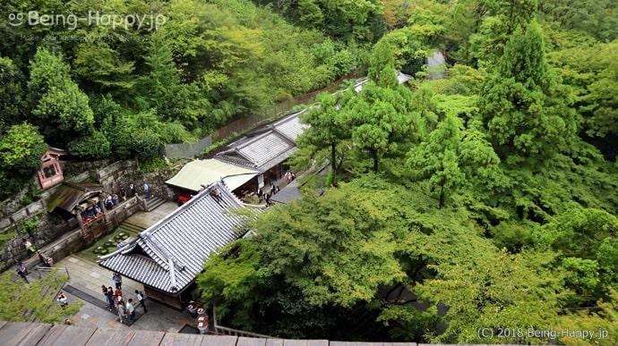 清水寺の舞台から下を眺めた光景