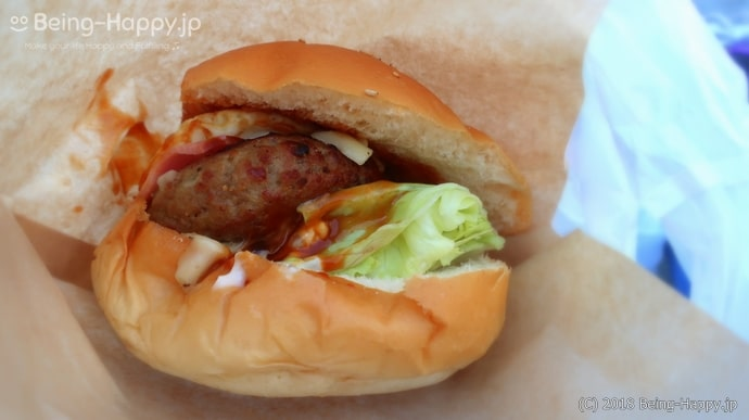 佐世保バーガーが美味しそうでついつい食べてしまいました(1000円なり)