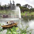 『東南植物楽園』の楽しみ方とお得なクーポン!沖縄の癒しとパワーの観光スポット