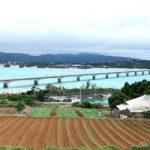 沖縄の絶景ビーチやおしゃれカフェを満喫!恋島『古宇利島』へ行ってみよ!